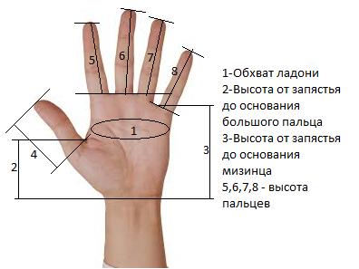 мерки для вязания перчаток спицами
